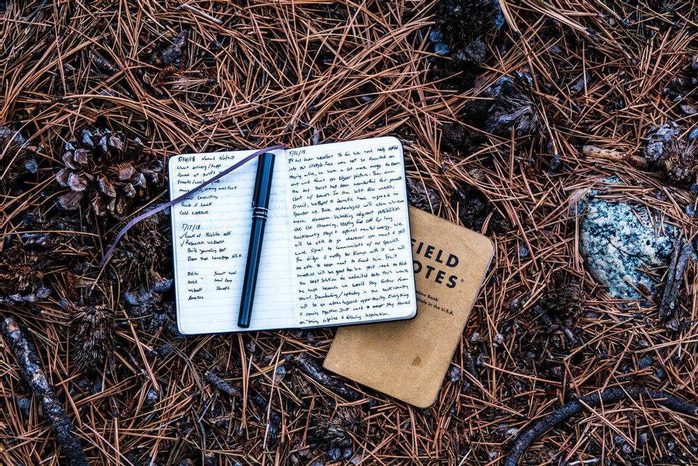 journal entry.jpg