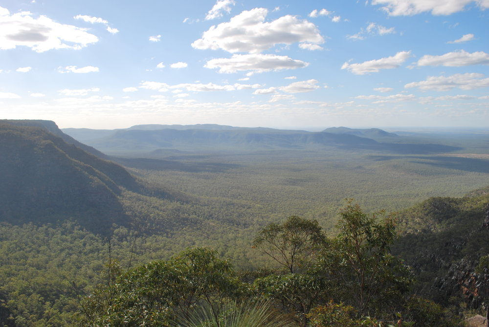 Blackdown 4x4 Lookout.JPG