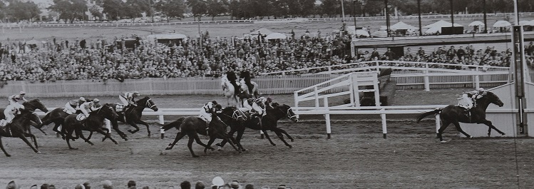 Helmast Winner Victoria Park Tombridge Handicap 1955
