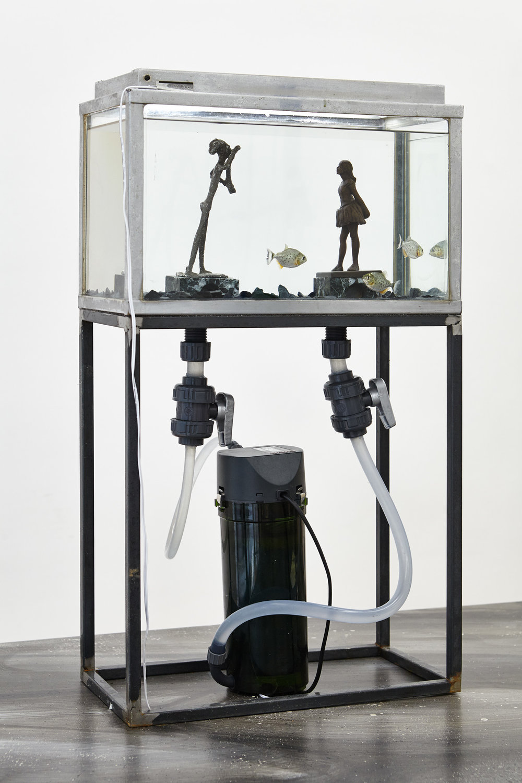 Thomas Mailaender, Fish Museum#4, 2017. Aquarium, métal, verre, 60 x 40 x 25 cm