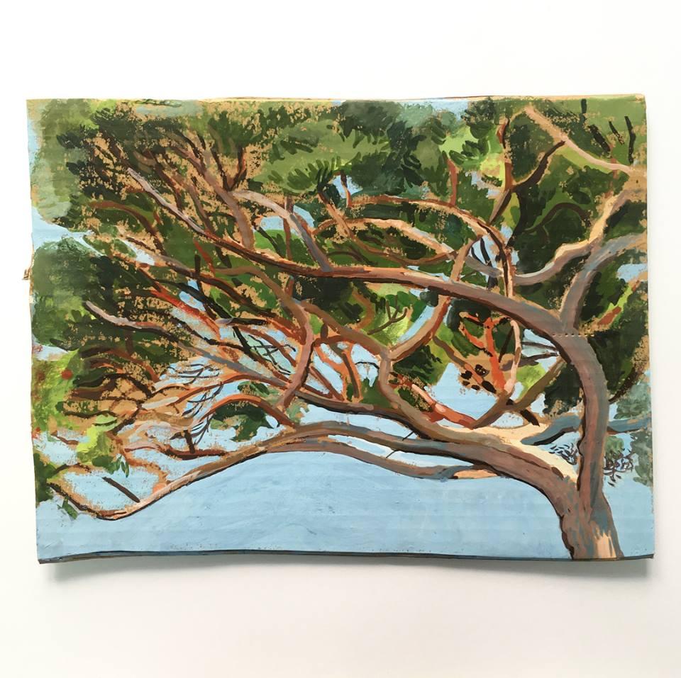 Matthieu Cossé,  Étude de pin III , 2016. Gouache sur carton, 30,5 cm x 23 cm