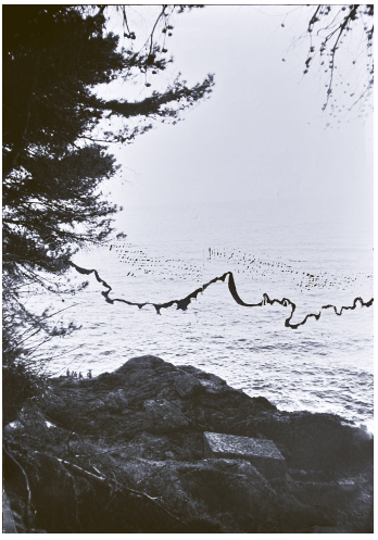 Clara Champsaur_ Gravue, 2015_ Double V Gallery.png
