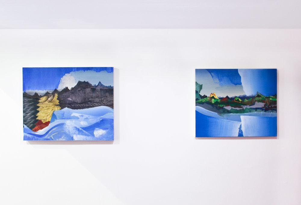 Vue d'exposition _ Elliott Green _ la Cage aux Fauves_Double V Gallery _ Marseille.jpg