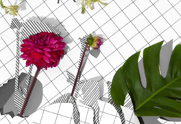 Let it Grow lancering met PR door Hagens PR