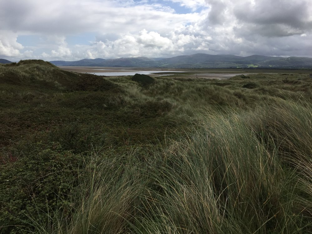Ynylas and the Cambrian Mountains