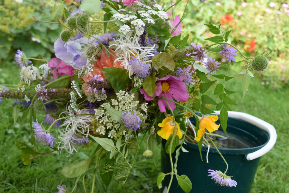 Wild bridal bouquet with jasmine, wild scabious, cosmos, ammi majus, Californian poppy, beech shoots and sweet peas