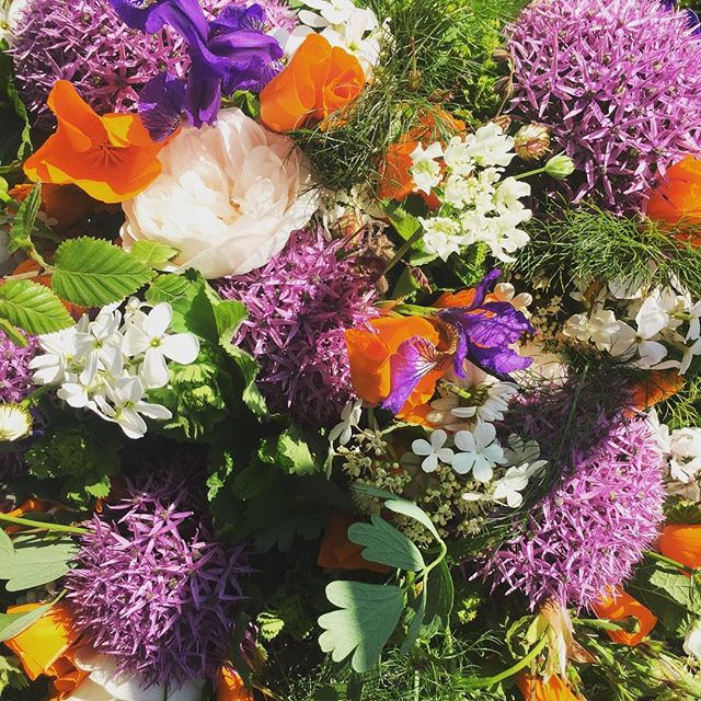Ahh, hello sunshine and flowers... welcome back, we've missed you ☀️ #britishflowers #homegrown #cutflowers #garden #summer #newlife