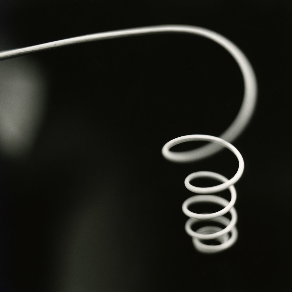 tendril,2004.jpg