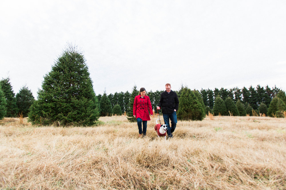 CHRISTMAS_TREE_FARM_ENGAGEMENT_PHOTOS--0140.jpg