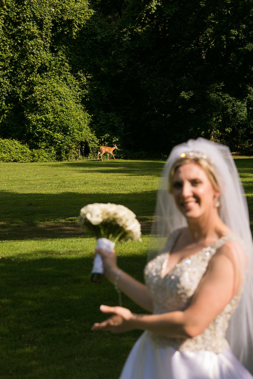 Meisenzahl Wedding - 360.jpg