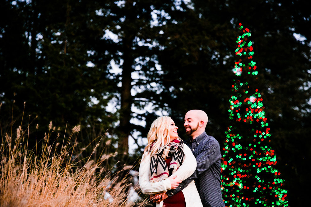 Longwood Garden Christmas Engagement Shoot -010.jpg