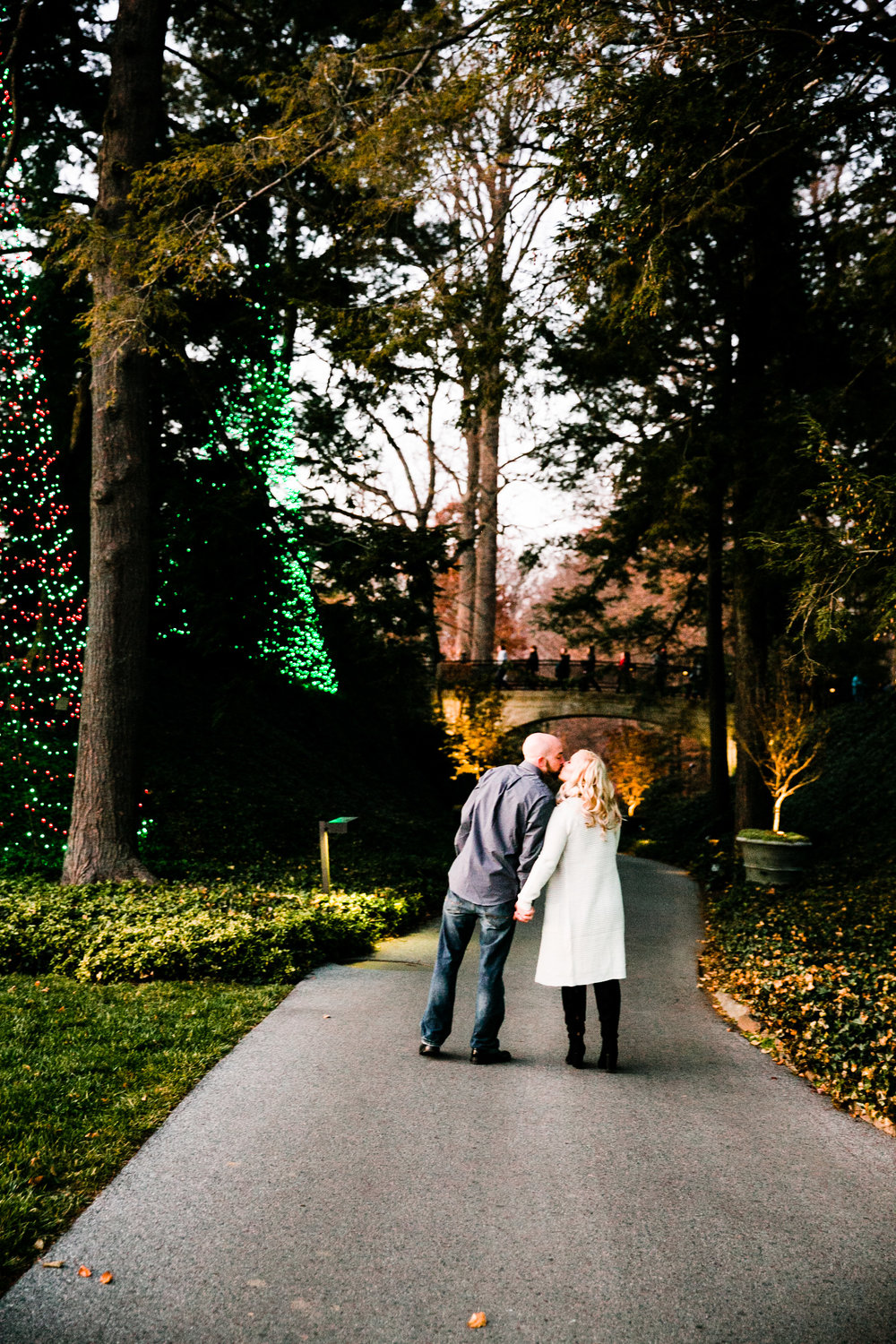 Longwood Garden Christmas Engagement Shoot -009.jpg