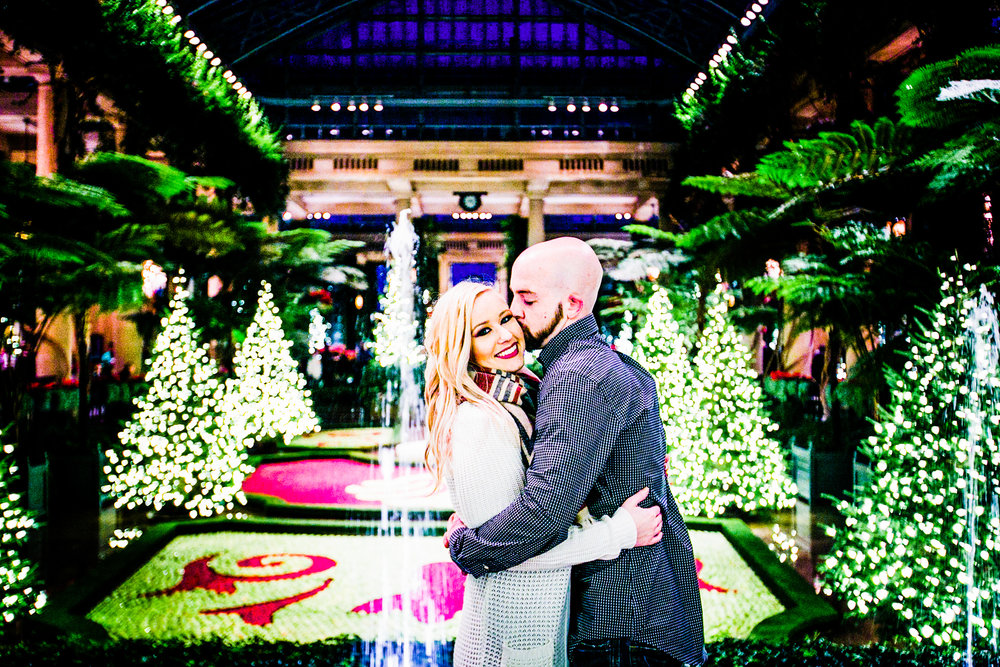 Longwood Garden Christmas Engagement Shoot -014.jpg