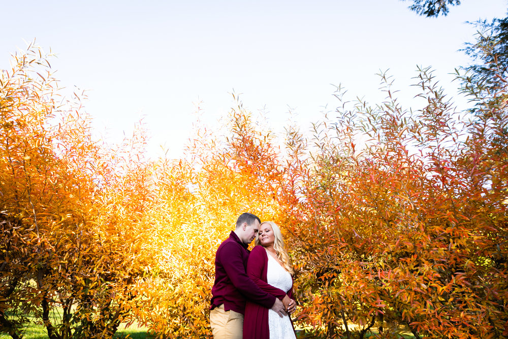 Morris Arboretum Engagement Photography - Lovestruck Pictures-008.jpg