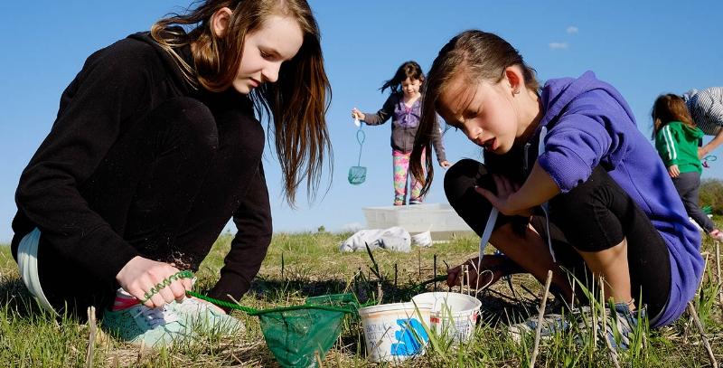 NatureCity Festival 2017   Explore our Prairie Waterscape      Learn More
