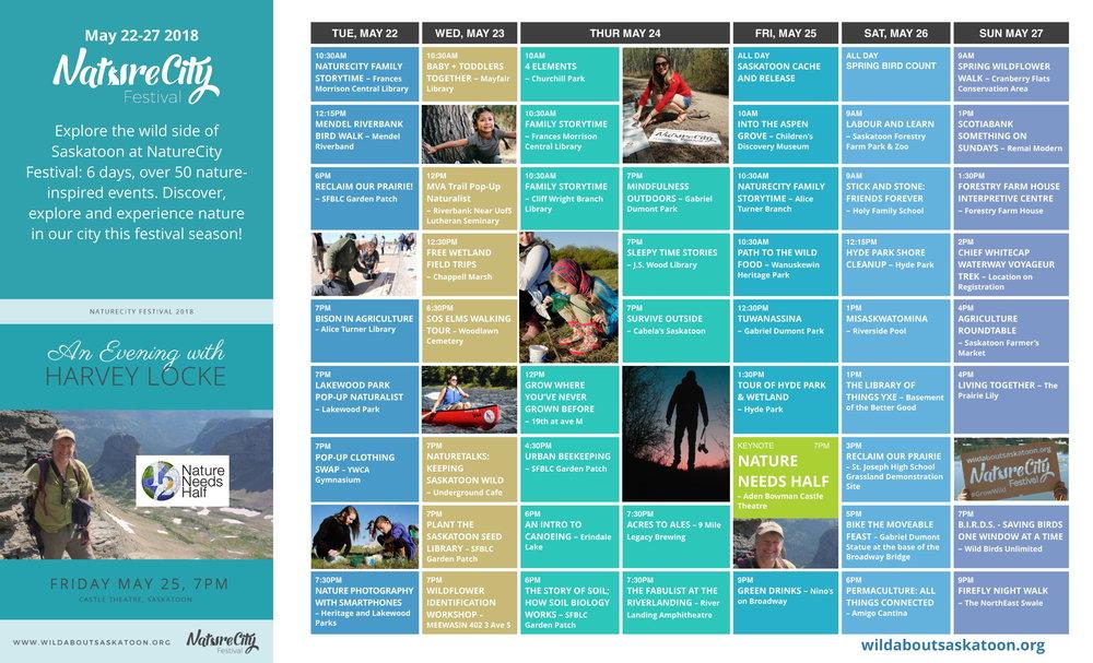 NatureCity Calendar -1.jpg