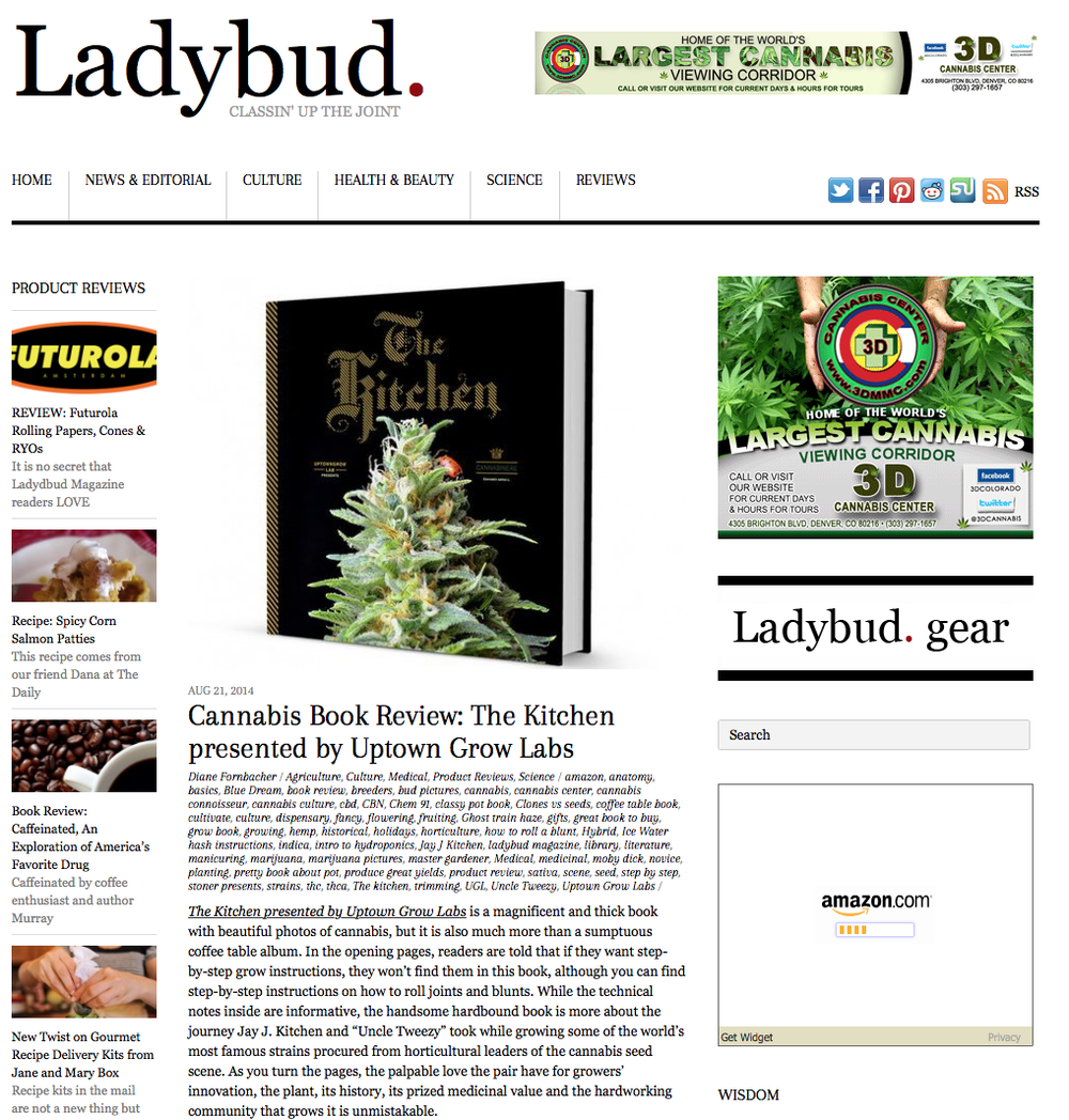 REVIEW IN LADYBUD
