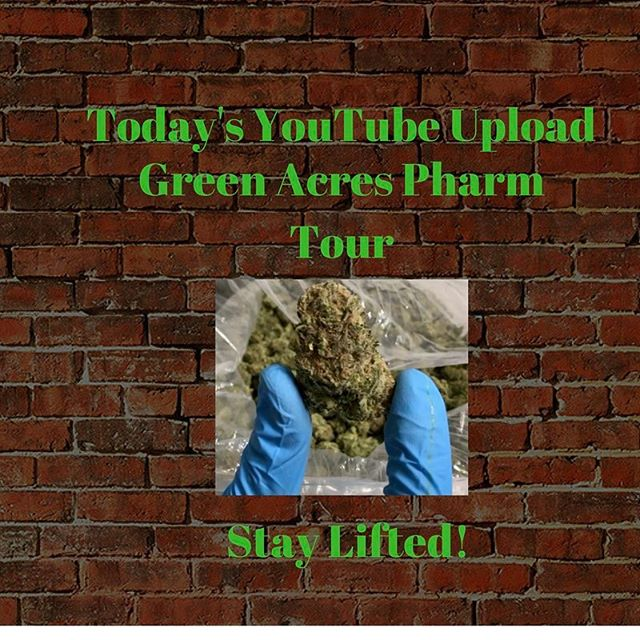 Please check out today's YouTube upload. @greenacrespharm @zito617 #weedgeezer #staylifted #rollyourbong #crohns