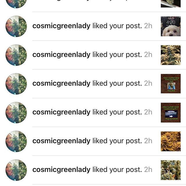 @cosmicgreenlady Thank you for the love #weedgeezer #doyouevengrowbro #staylifted #rollyourbong