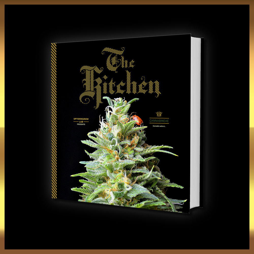 Uptown Growlab [SQ CR][at 60 x 72 x 64] w GOLD The Kitchen by Jay Kitchen v2 at 64 full by Graham Hnedak Brand G Creative 01 JAN 2018.jpg