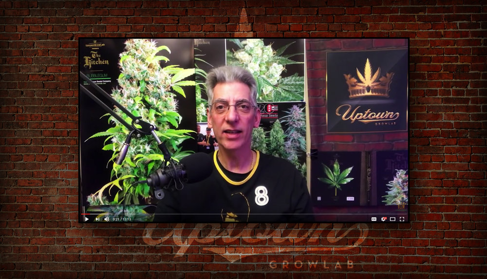 Uptown Growlab Video Series Promo Panel by Graham Hnedak Brand G Creative REV 01 JAN 2018.jpg
