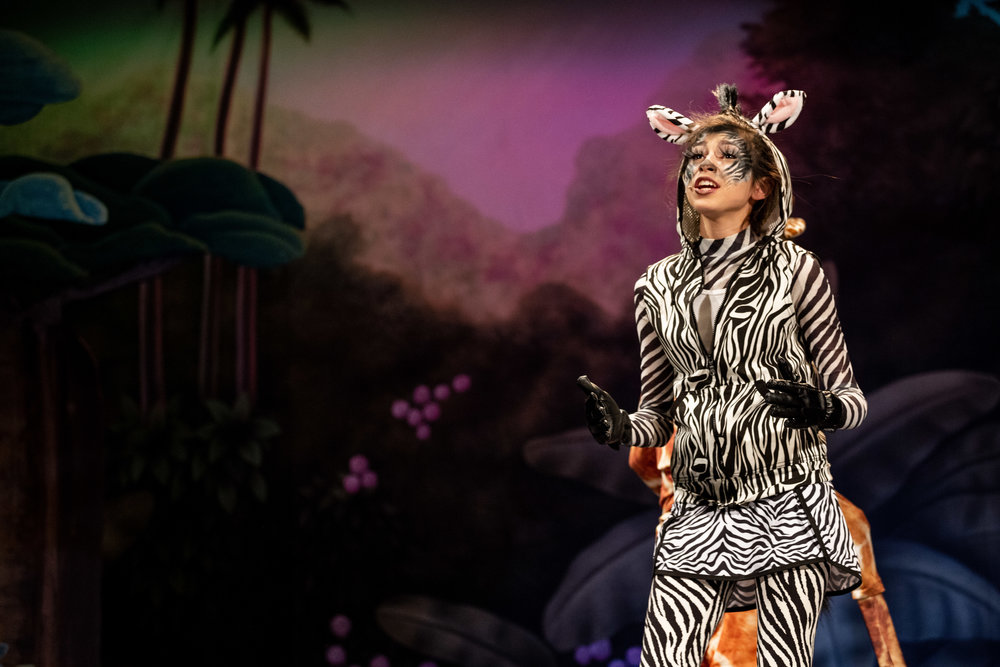 zebra singing.jpg