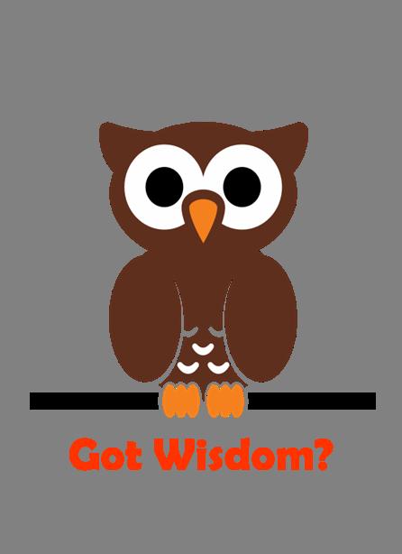 Got Wisdom