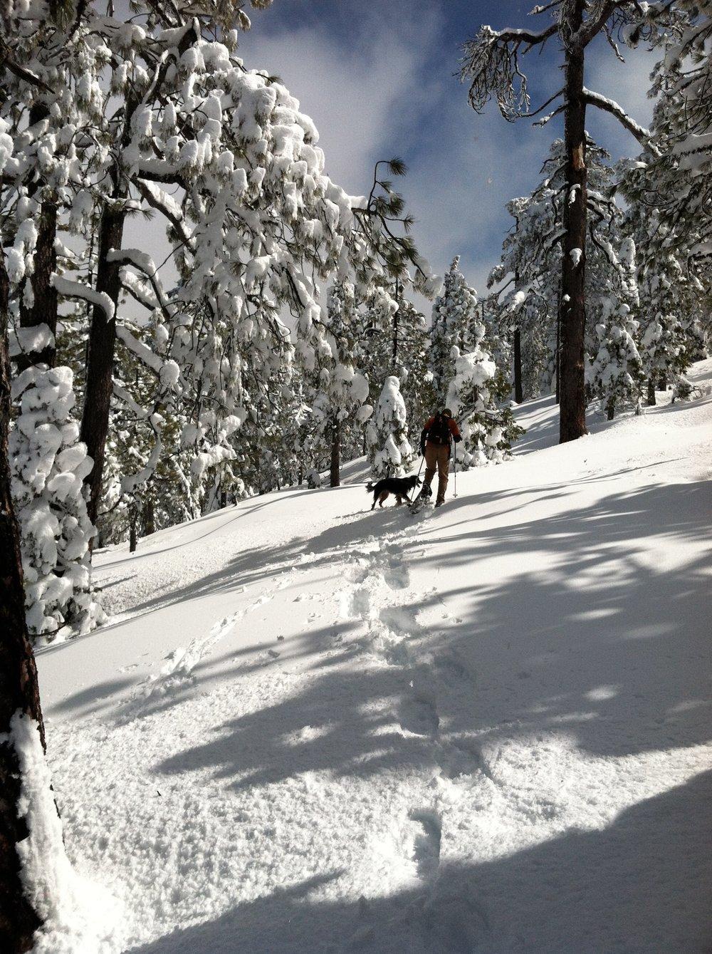 Snowshoeing on Horse Mountain
