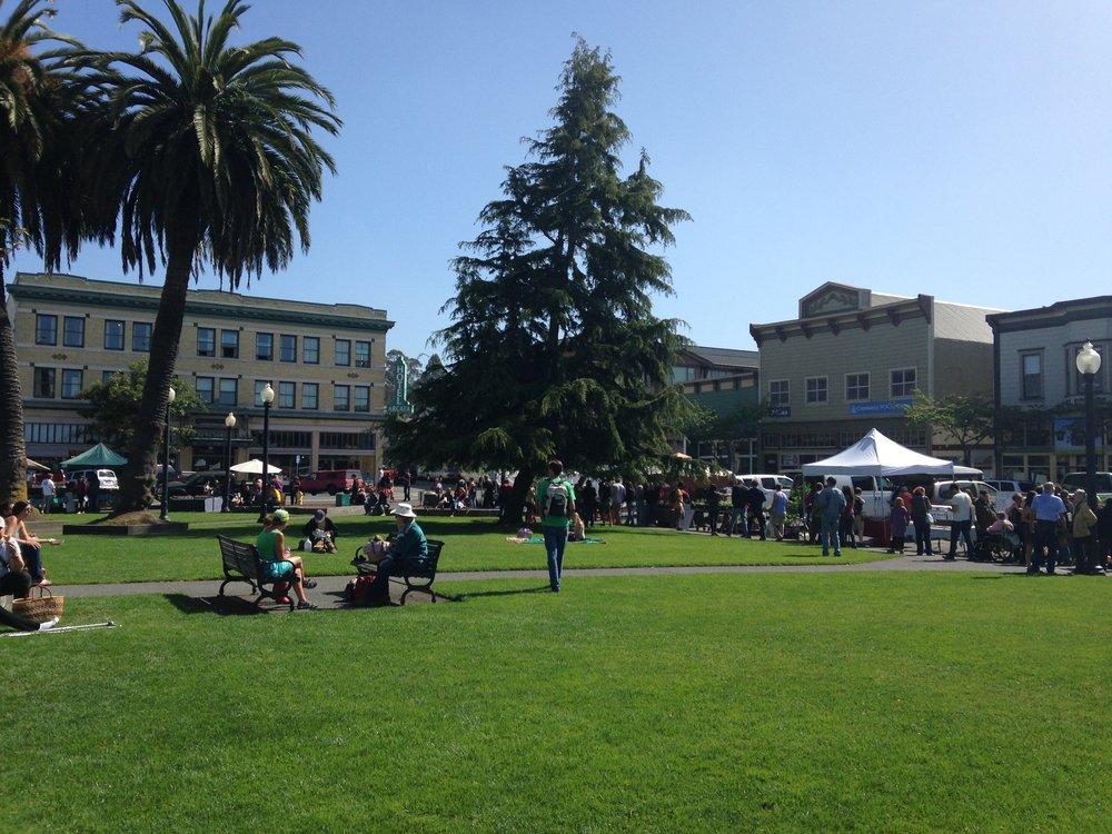 Saturdays at the Arcata Plaza Farmer's Market
