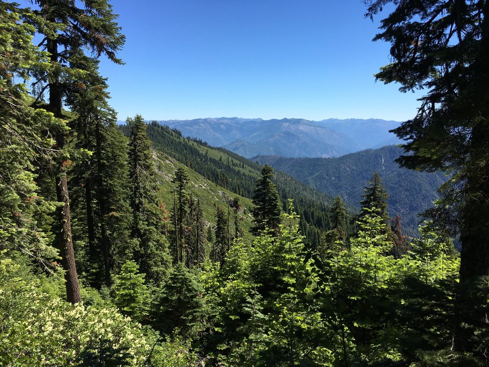 Red Cap Lake Trail to Salmon Mountain