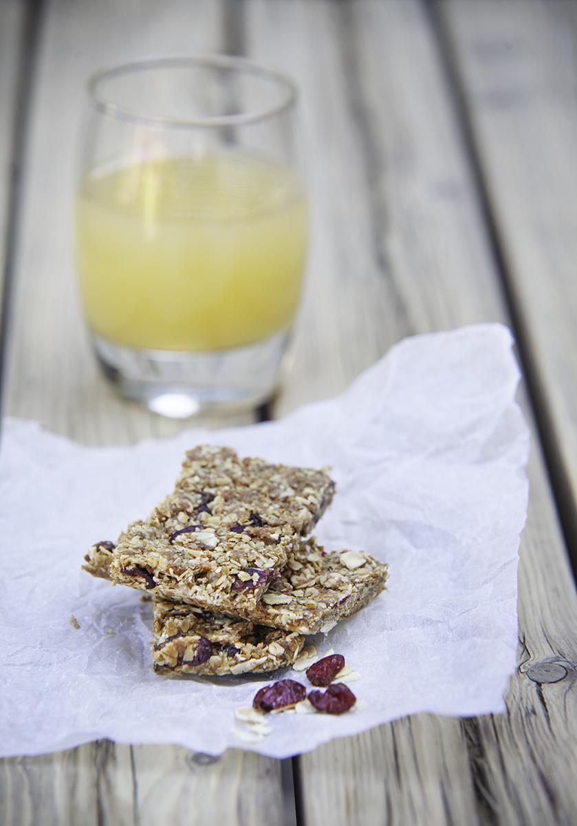 vegan-granola-bar-recipe.jpg