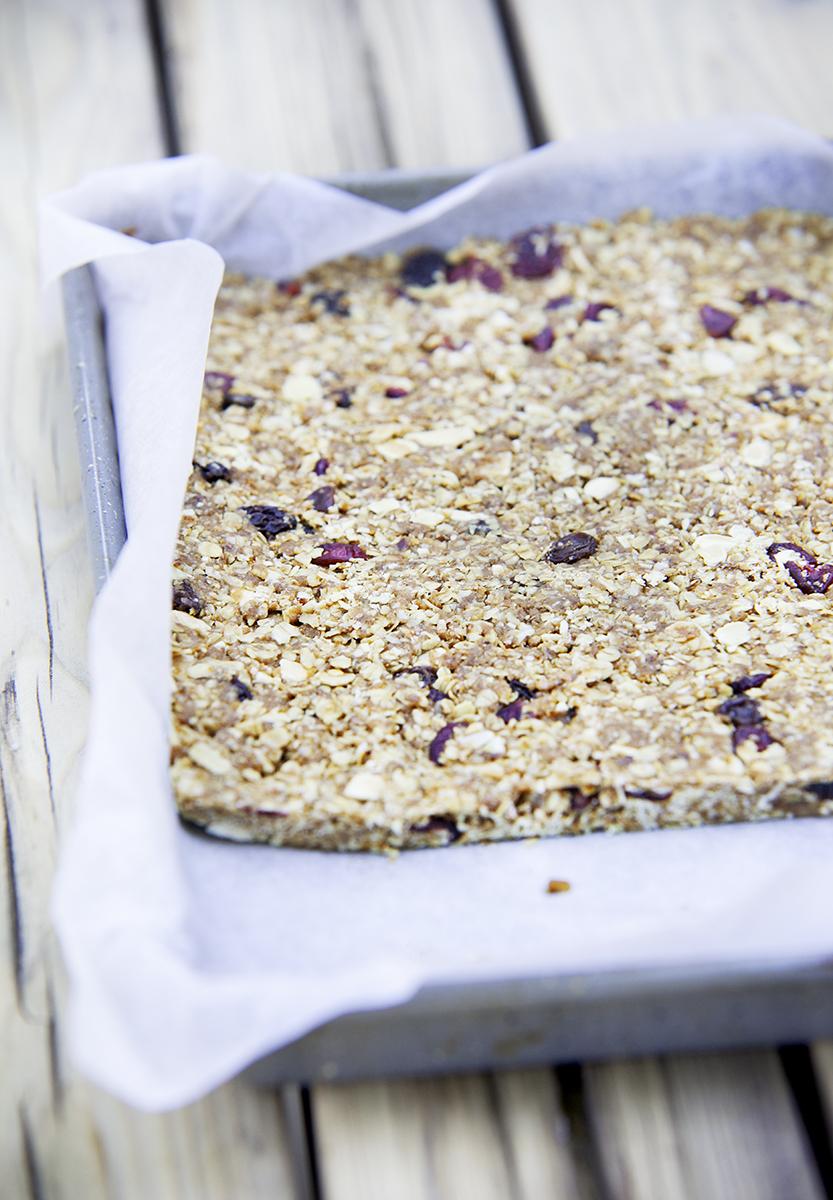 vegan-cereal-bar-recipe.jpg