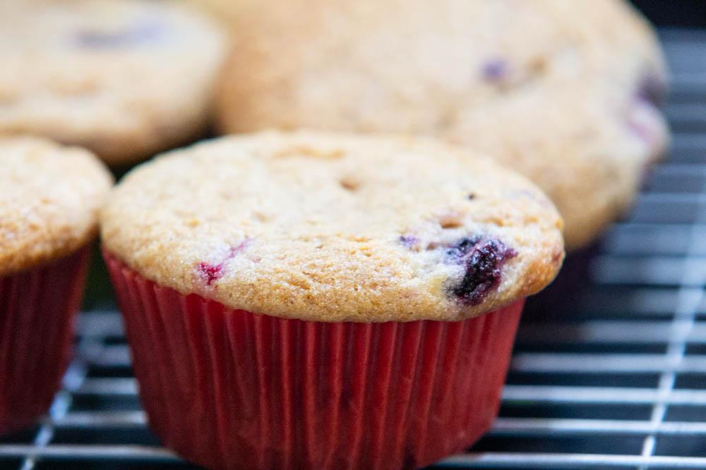 vegan-muffin-recipe.jpg