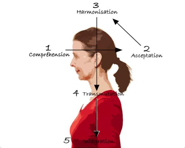 etapes de guérison