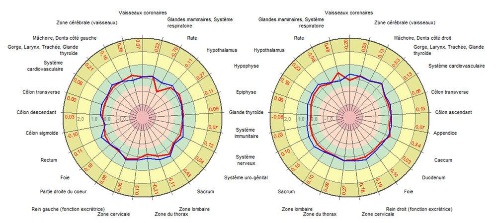 Figure 2 – Les diagrammes L'énergie de chaque organe y est représentée.