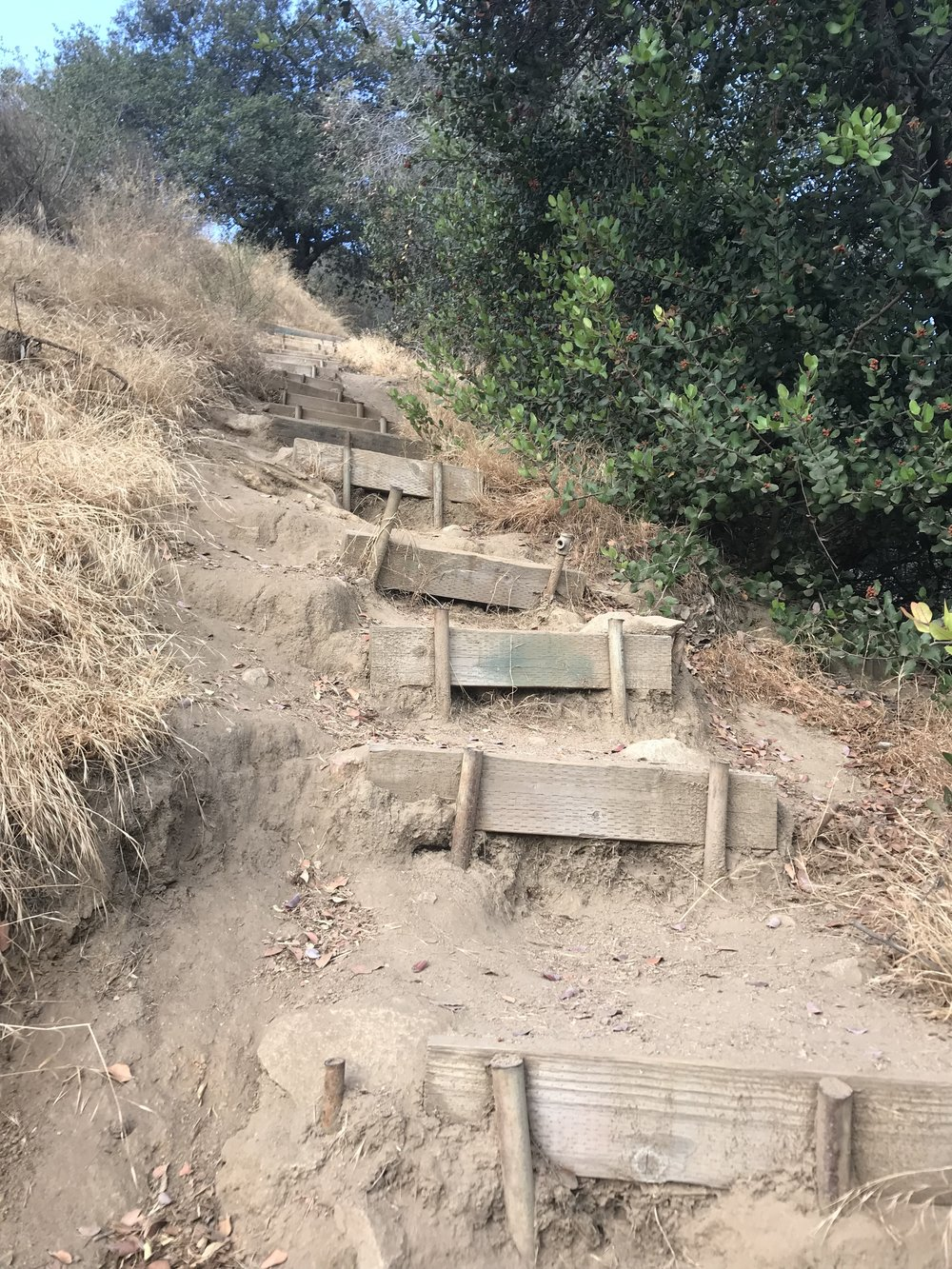 Be Aware - We will be climbing up very steep steps for about 1/4 mile.