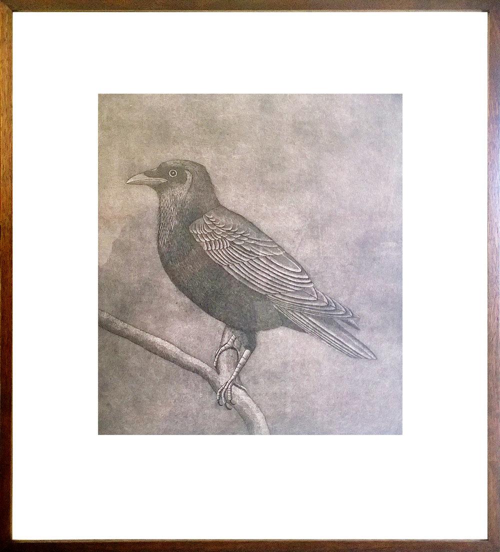 "Raven - Artist: Diane RobinsonMedium: PrintSize: 22"" x 25"