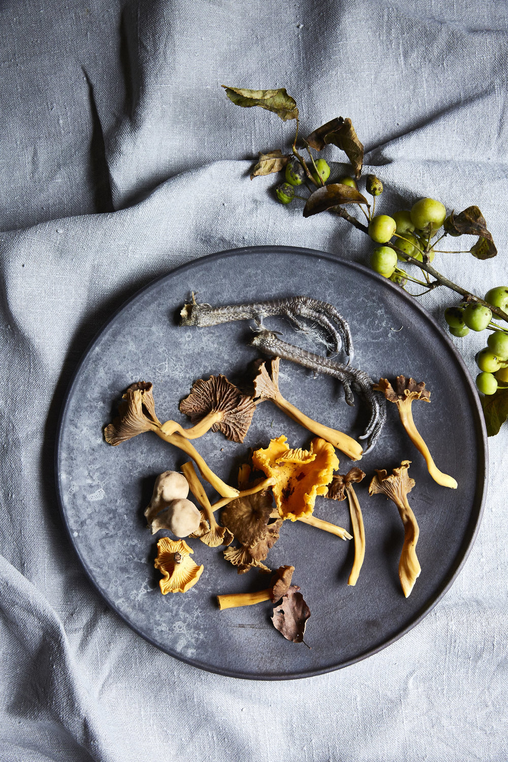 Wild Irish Mushrooms Toronto Food photographer