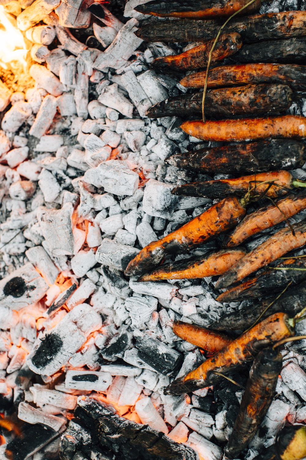 Fire Roasted Carrots on Coals Toronto Food photographer - Suech and Beck