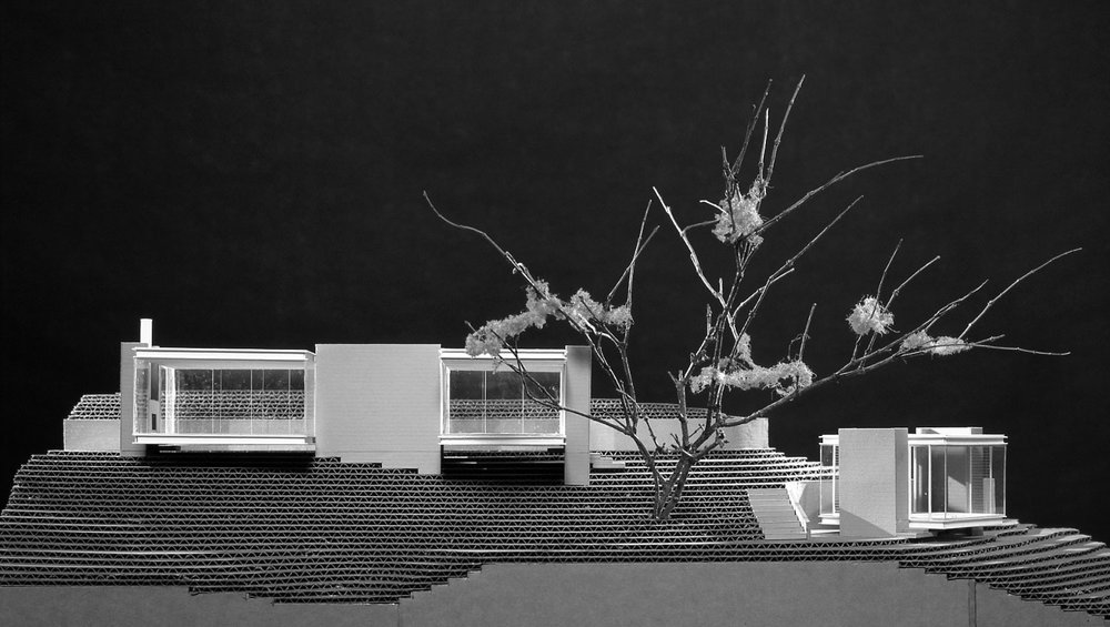 teahouse_model03_BW_cropped.jpg