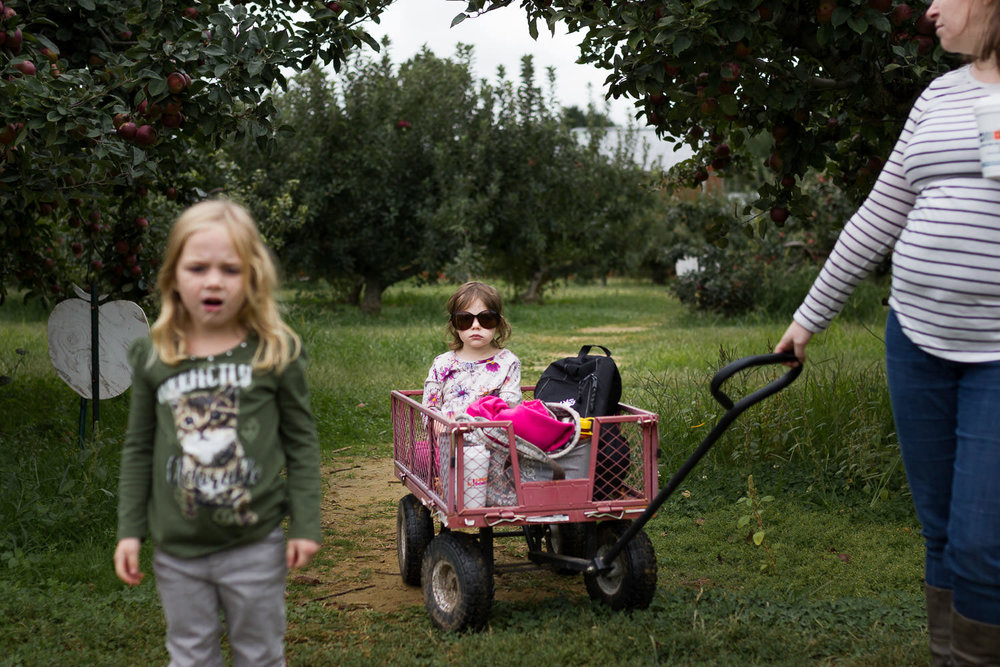 child in wagon in apple orchard with sister and mom