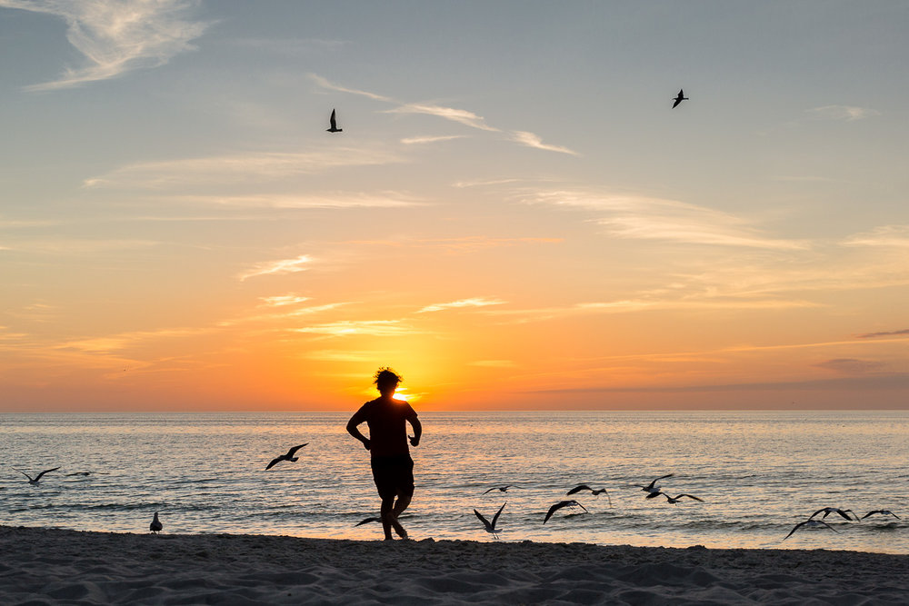 family photo of man running along beach sunset sunset with birds