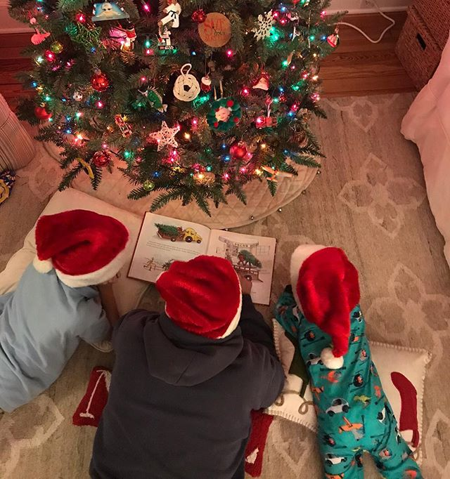 Happy holidays from the Live Kindly Team.  We love family traditions, especially Christmas stories under the tree.  Best wishes to all our followers and thank you for your support.  https://www.livekindly.com #holidays #christmastree  #traditions  #kindness #kindon.