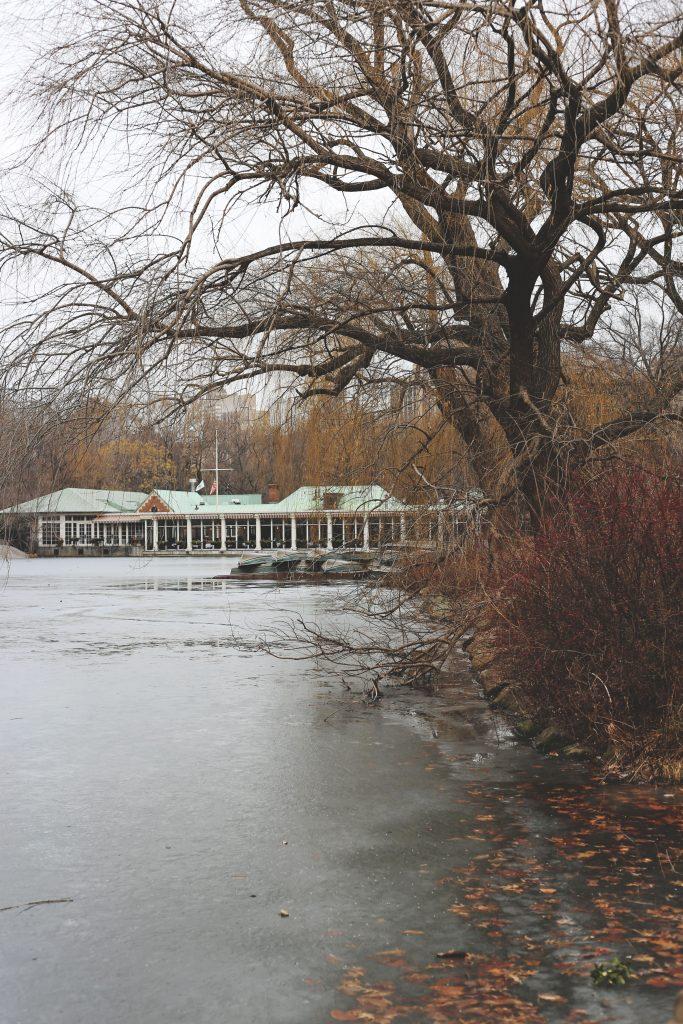 centralpark2-683x1024.jpg