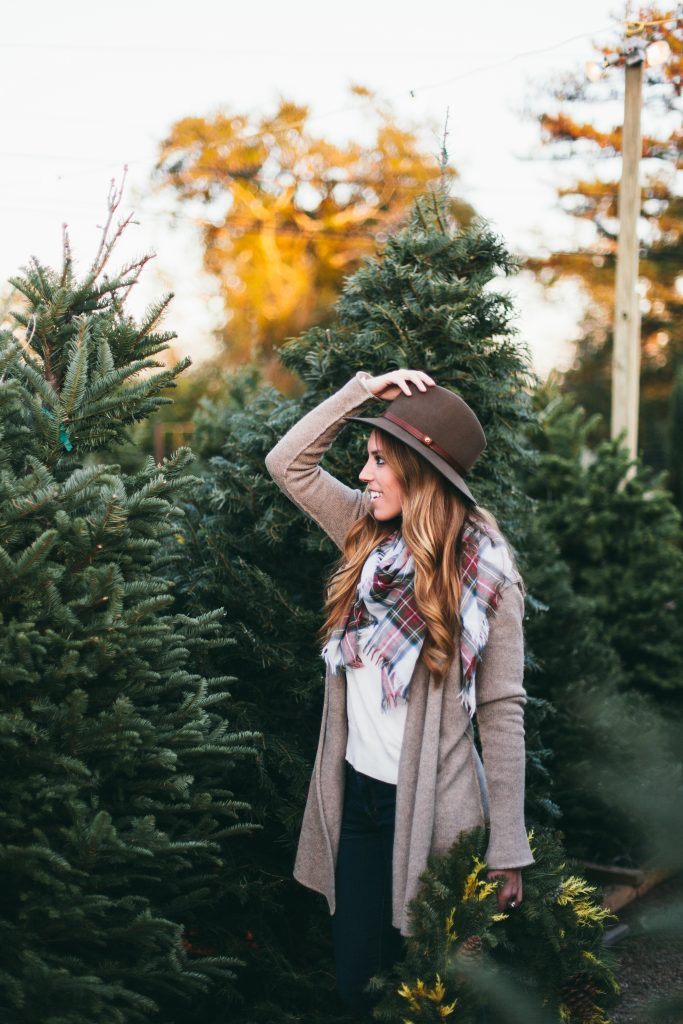 Christmastrees20-683x1024.jpg