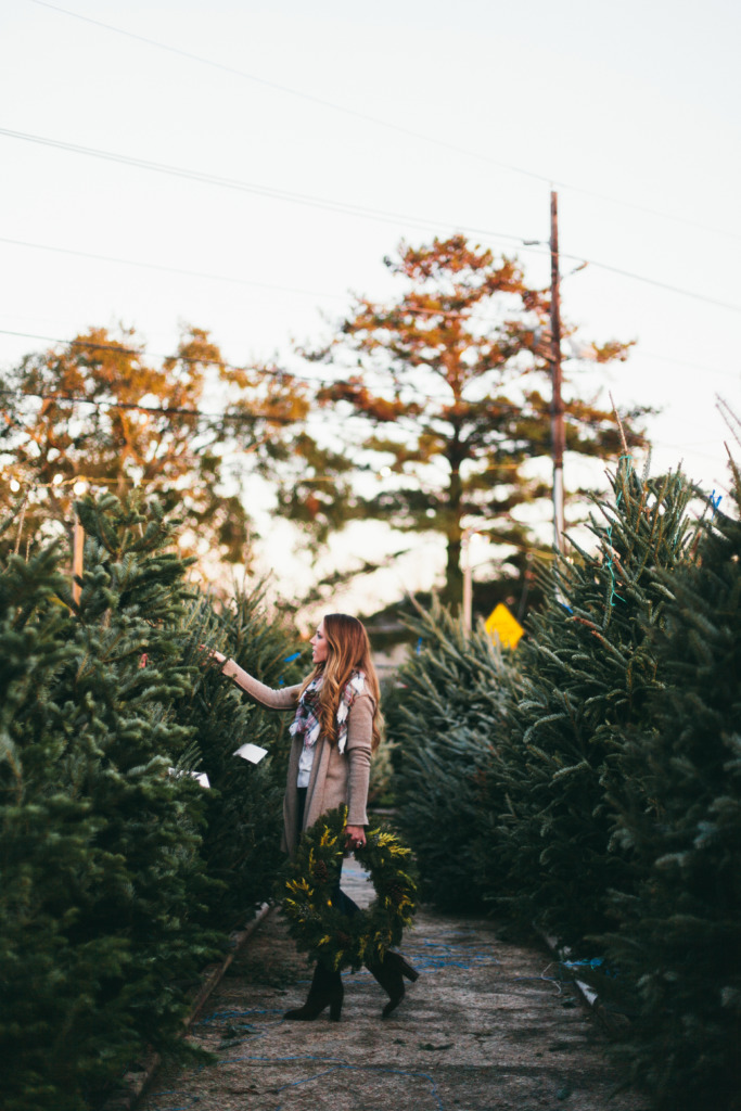 Christmastrees24-683x1024.jpg