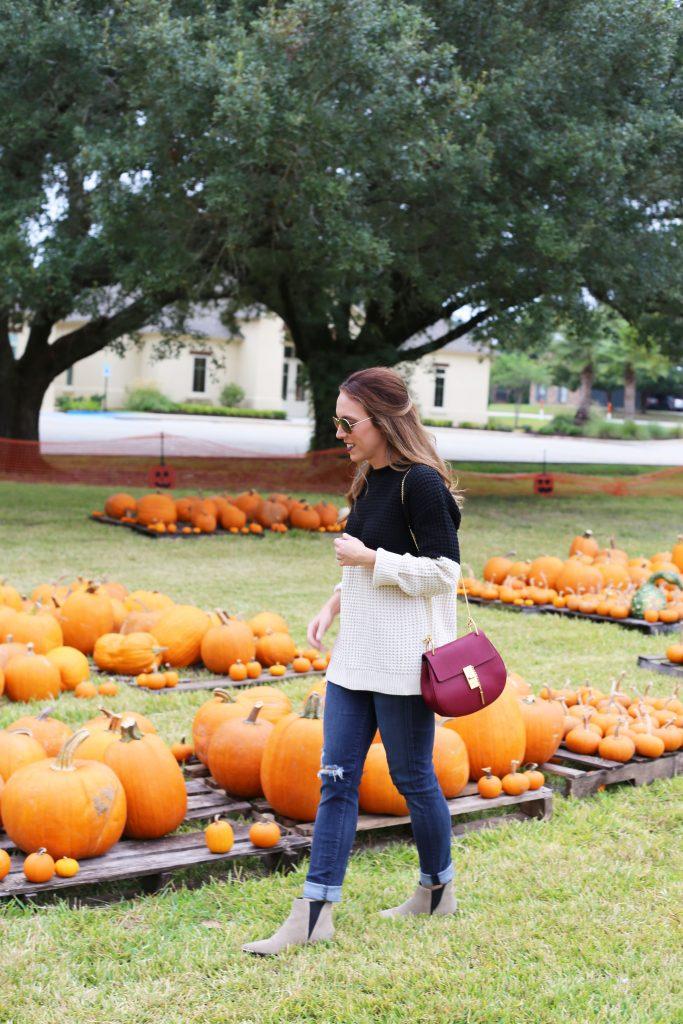 pumpkin9-683x1024.jpg