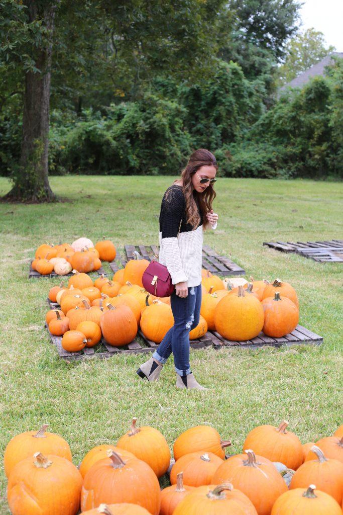 pumpkin6-683x1024.jpg