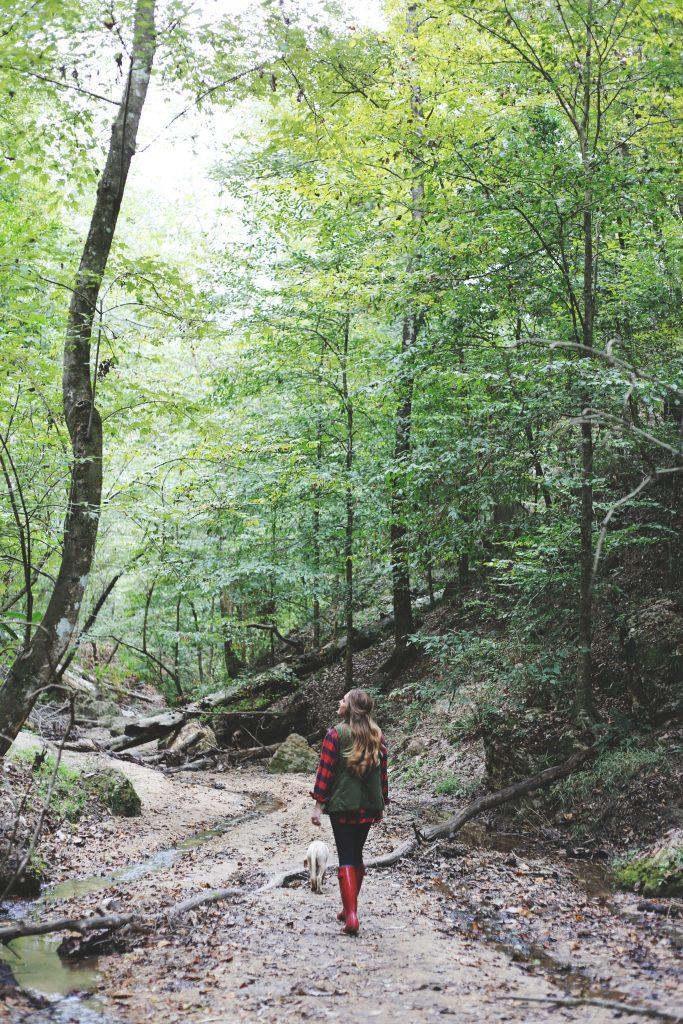 hike9-683x1024.jpg