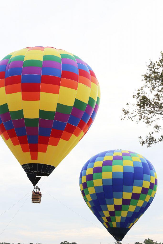 balloon7-683x1024.jpg